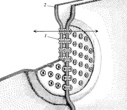 Схема щелевого соединения